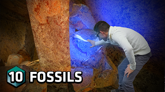 Dig through the ground with your holographic drill as you search for dinosaur bones