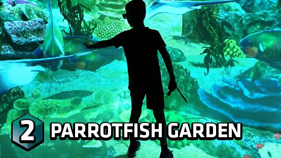 Swim with the parrotfish and explore their aquarium habitat!